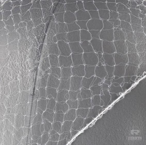 """144/PK 24"""" White Nylon Honeycomb Hairnet"""